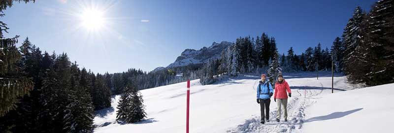 Camminare nella neve con le scarpe da neve