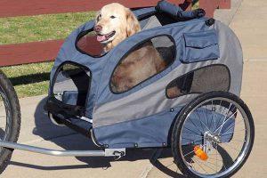 Rimorchio bici per cani migliore professionale: caratteristiche, modelli 2021 e prezzi