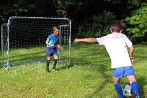 Porte da calcio per il giardino: dimensioni, materiali e offerte online