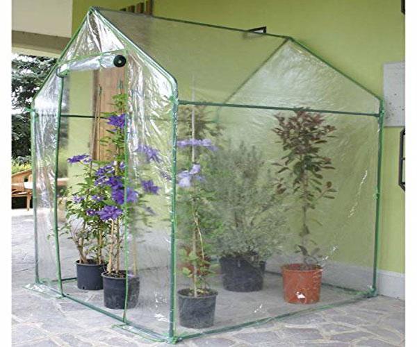 Miglior serra per piante consigli utili e guida all for Serra per piante