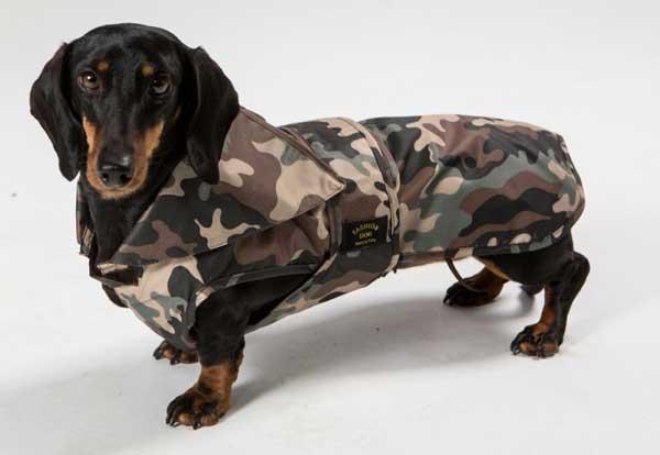 f31b9d7c1456 Cappotto per cani  Come scegliere il migliore  Classifica con prezzi ...