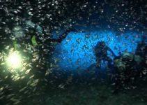 Miglior Camera Subacquea : Videocamera subacquea confronto delle migliori action cam da