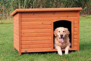Cuccia per cani da interno e da esterno – I Migliori modelli qualità prezzo