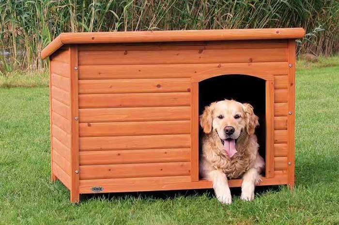 Cuccia per cani da interno e da esterno i migliori for Prezzo cuccia cane leroy merlin