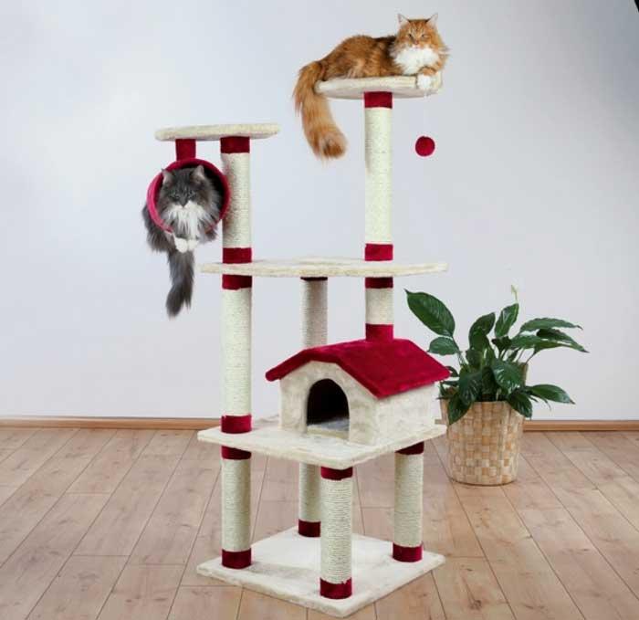 trespolo economico per gatti grandi