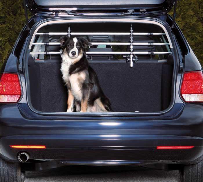 Classifica Top5 Dei Migliori Divisori Auto Per Cani Modelli