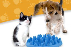 Le Petit Ciotola: ciotola anti strozzamento per cani voraci