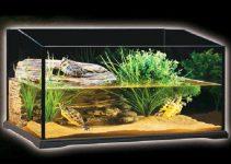 Plafoniera Led Acquario Acqua Dolce : Illuminazione per acquario migliori lampade e plafoniere a led