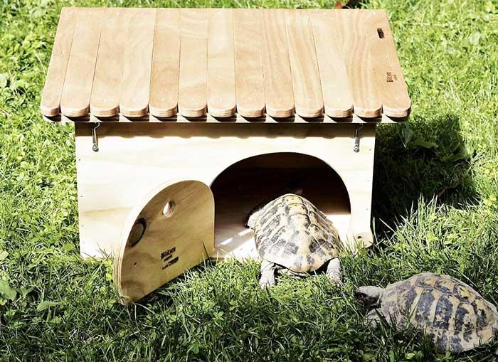 Casa per tartarughe di terra