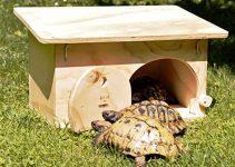 Casa per tartarughe