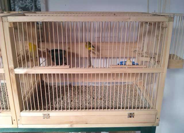 Gabbia in legno per uccellini