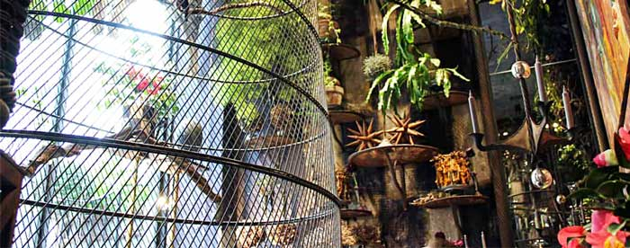 Gabbie per pappagalli inseparabili
