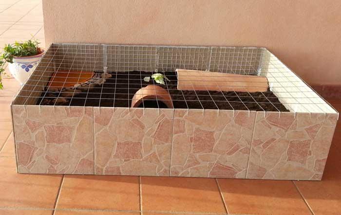 Terrario per tartarughe di terra