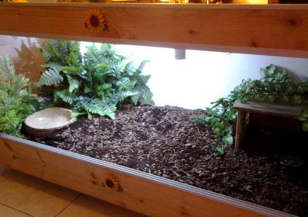 terrario per tartarughe terrestri modelli in vetro e in
