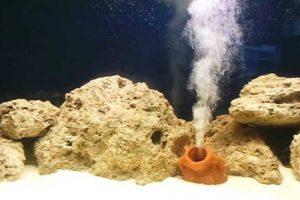 Ossigenatore per acquari silenzioso