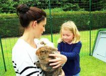 Recinto da esterno per conigli