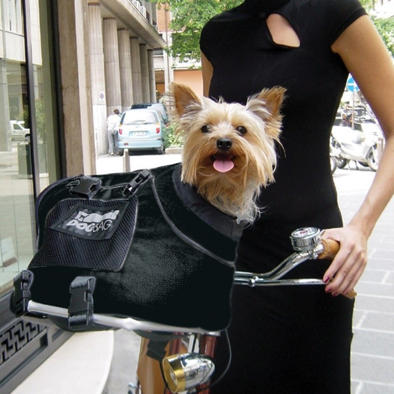 Cesta da bici per trasportare cani