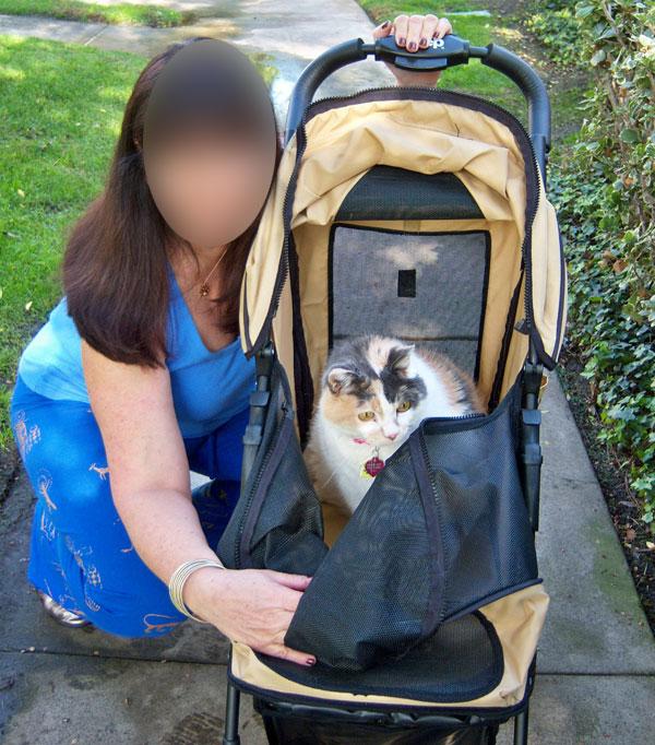 Passeggino per Gatti