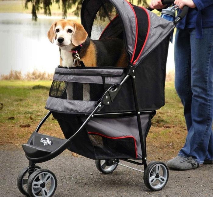 Passeggino per cuccioli