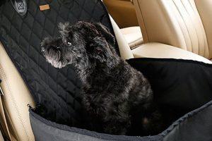 Seggiolino da auto per cani