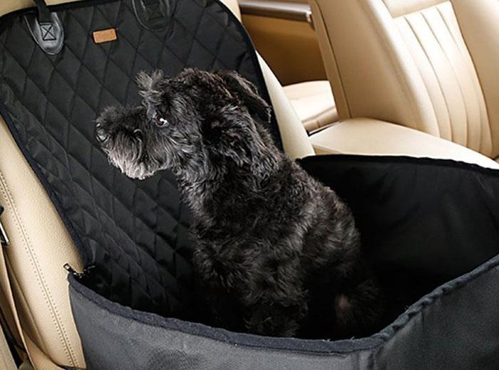 Seggiolino per cani da auto: Come funziona? Guida all ...