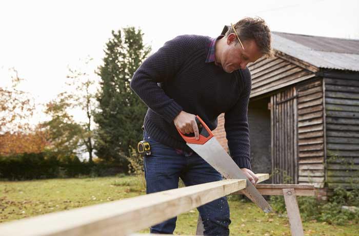 Segaccio a mano per legno