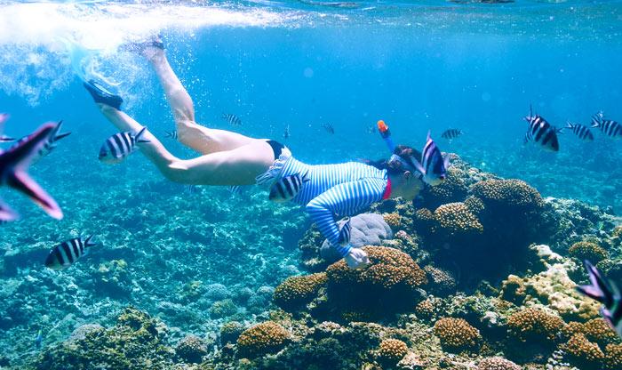 Fotocamera subacquea guida all acquisto e prezzo delle migliori