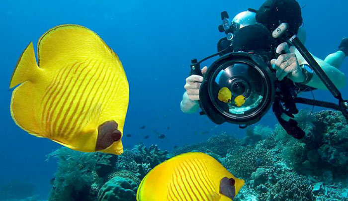 Miglior Camera Subacquea : Miglior camera subacquea migliore macchina fotografica subacquea