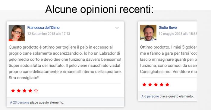 Opinioni e pareri su Spazzolamica