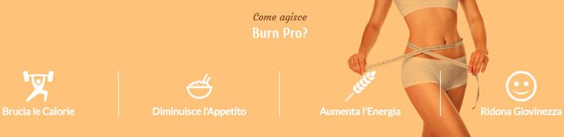 Come funziona Burn Pro