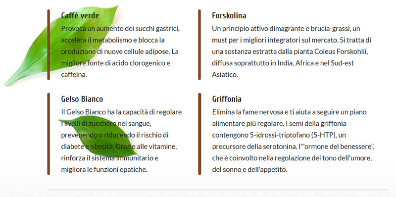 Ingredienti di Burnpro