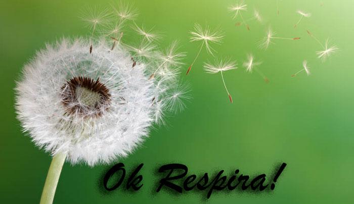 Ok Respira contro la rinite allergica