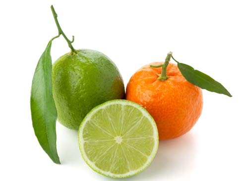 Ingrediente di ultrametabolismo