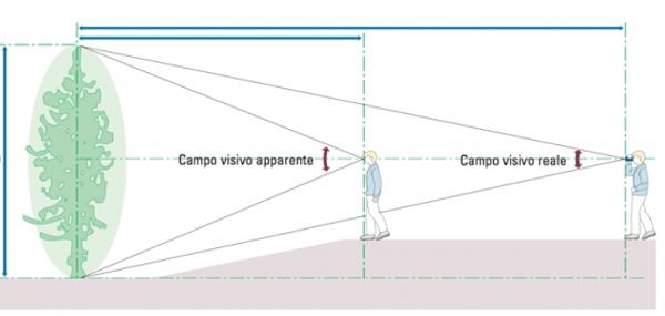 Significato di campo visivo dei binocoli