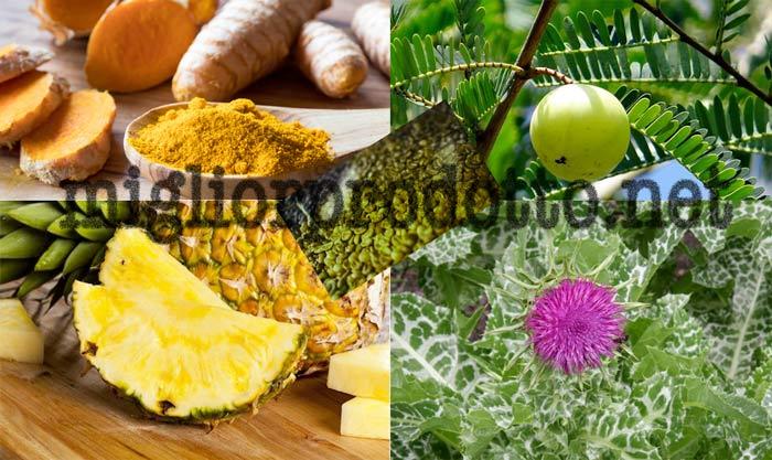 Ultrametabolismo ingredienti