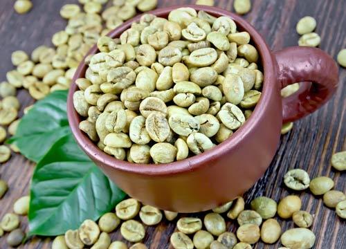 Caffe verde contenuto in Ultrametabolismo
