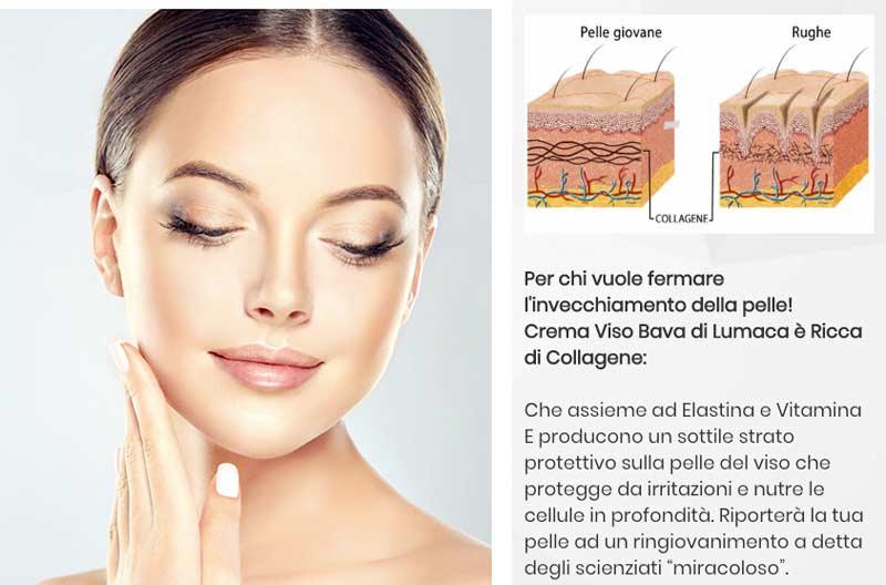 Come funziona la crema viso bava di lumaca Eco Bio Boutique