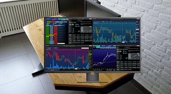 Monitor per pc Dell