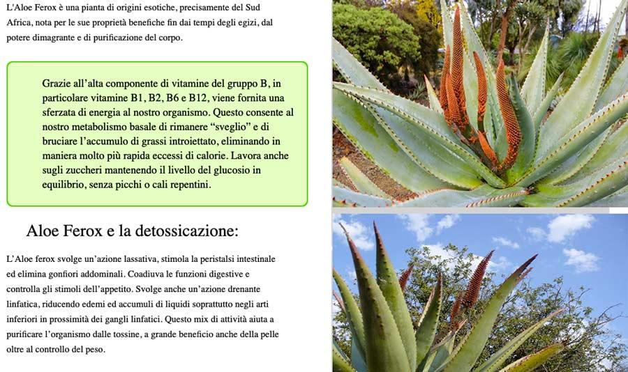 Come funziona Bio Aloe Ferox