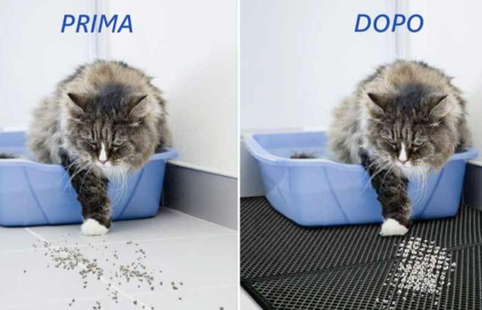 Come funziona Cat e Clean