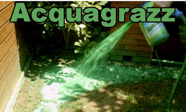 Acquagrazz